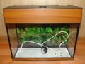 стеклянный аквариум 41х19х32см(д-ш-в)